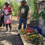 Subsistence farm in Mascarilla