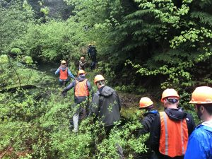 Forestry Issues – May 15-17, 2019